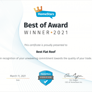 Best Flat Roof - Best of Award Winner 2021